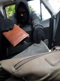 torbica v avtu
