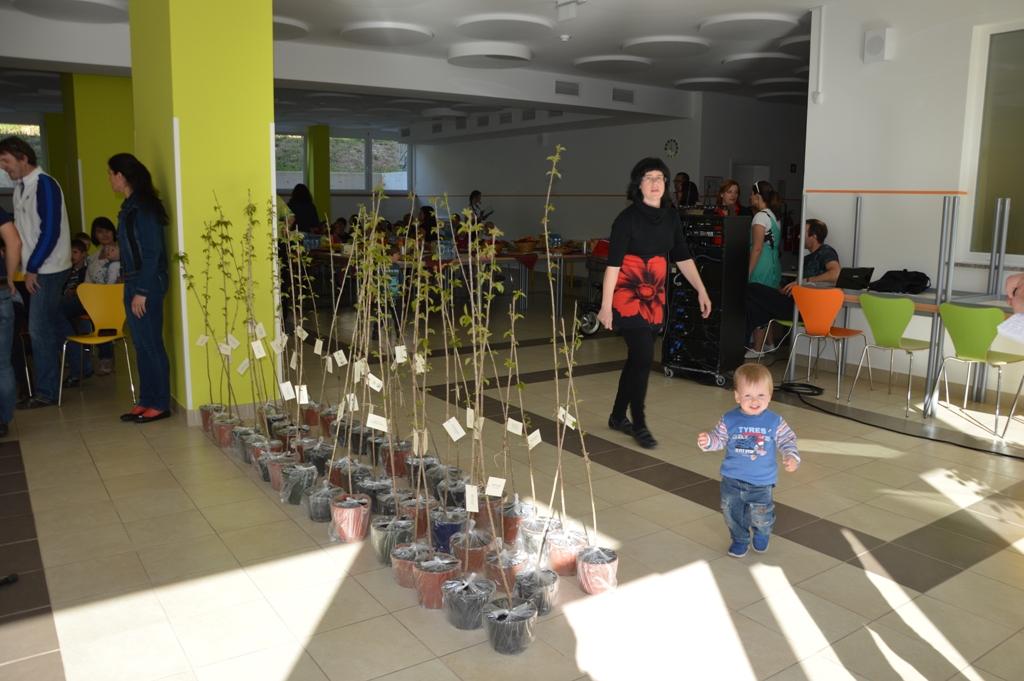 Drevesa za otroke 210416 (1)