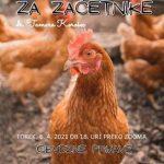 Reja kokoši za začetnike - ZOOM delavnica